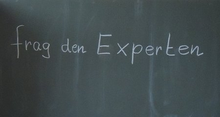 Die Stunde des Experten