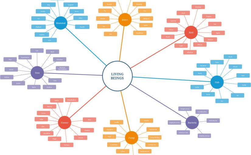 Warum Diagramme wichtig sind