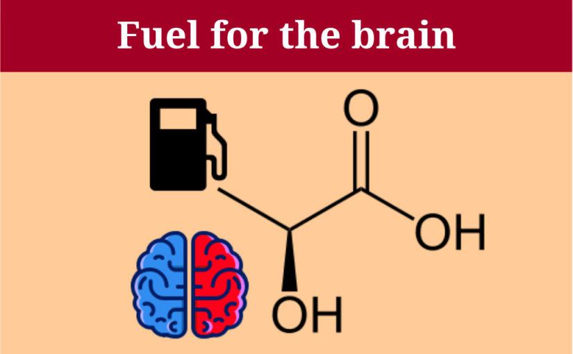 Laktat als Treibstoff für das Gehirn